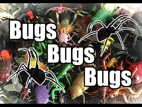 Big Bug Toys Collection - Spiders Ants Flies Scorpions Beetles Praying Mantis
