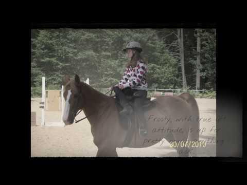 Horse Training Internship Application Video