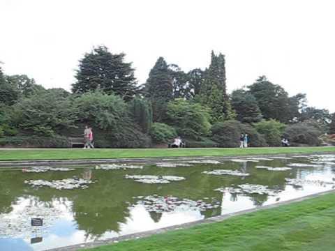RHS Garden Wisley - Surrey #1