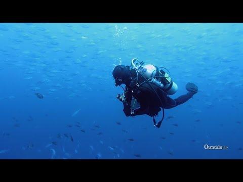 Diving in New Zealand's Snow Globe Of Fish   Descending