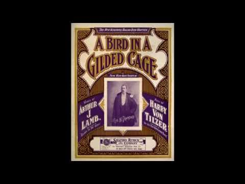 A Bird in a Gilded Cage (1900)