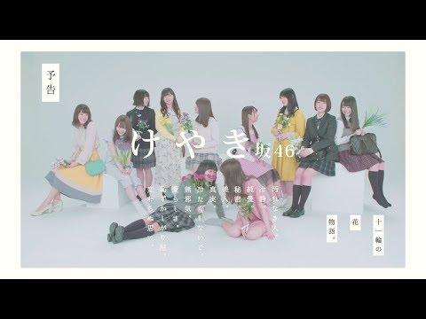 【欅坂46】人気メンバーランキング!歴代メンバーの中でTOP10は?