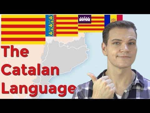 The Catalan Language