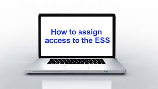 How to assign access ess