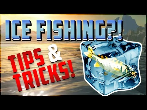 Breath Of The Wild | Ice Fishing?! | Tips & Tricks!!