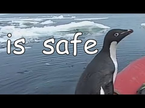 Safety inspection penguin