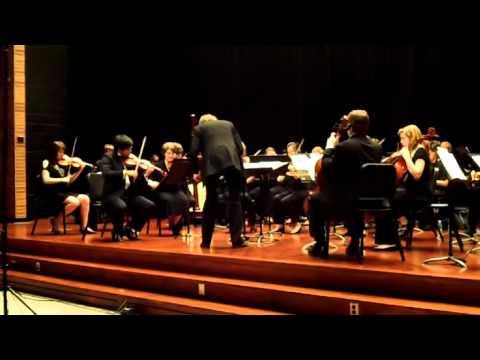 Hendrix College Chamber Orchestra plays Elgar's Symphony #1 Andante. Nobilmente e Semplice
