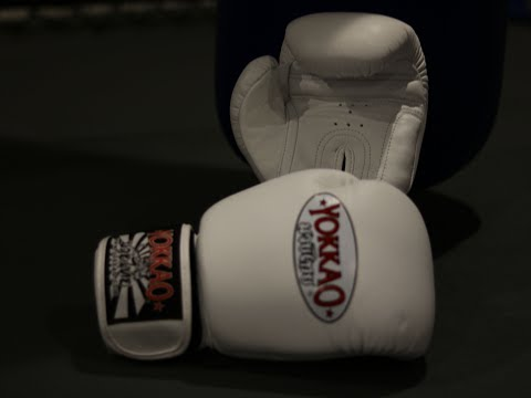Yokkao Muay Thai Gloves (Matrix)