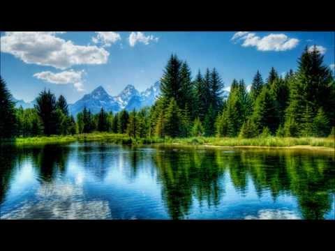 3 h Musique Relaxante   Nature   Forêt   Lac   Source   Chants des oiseaux   Relax'Action®