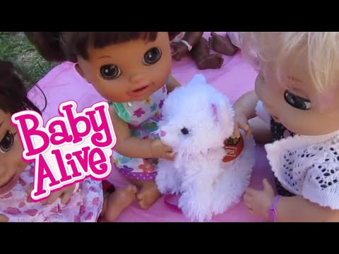 Baby Alive Pumpkin Loses Adoptimal From Cabbage Patch R
