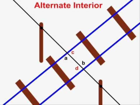 Alternate Interior Angles  YouTube