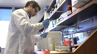 Blood test could show who needs antibiotics
