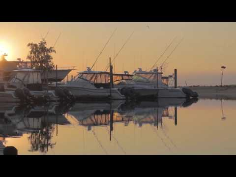 Sight-Casting For Peconic Bay Stripers And Blues   S14 E5