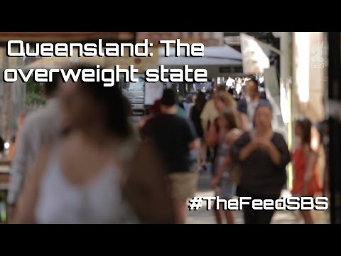 Queensland: The Overweight State - The Feed