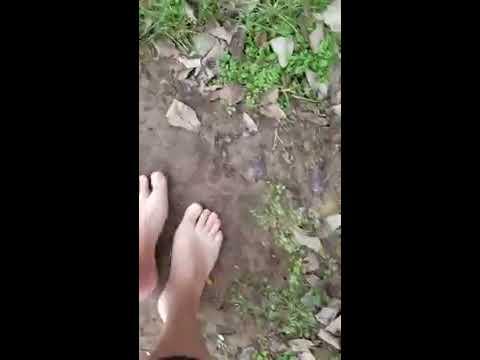 Crushing, trampling, walking barefoot in mud.