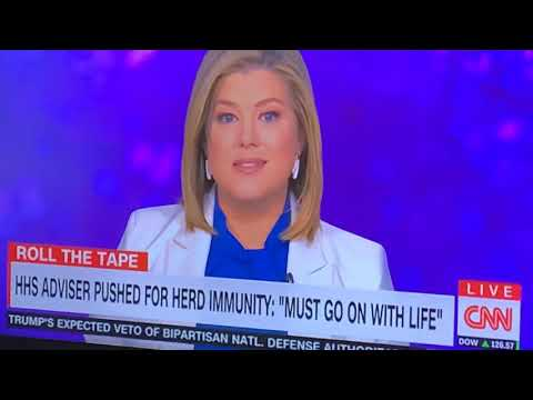 COVID-19 Herd Immunity Touted By Trump Administration Official, As Other Say No, According To CNN