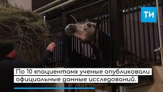 Уникальная разработка казанских