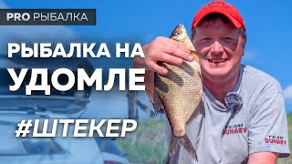 Ловля штекером на озере Удомля.