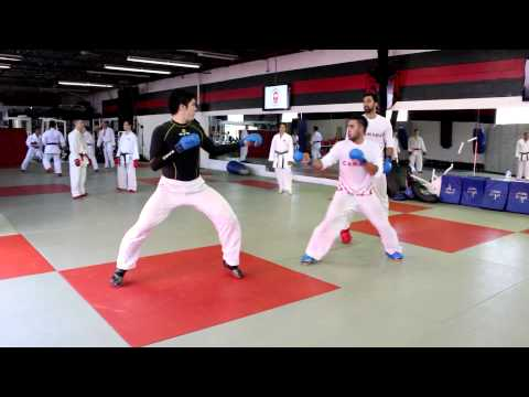 Canada's Senior National Karate Training Camp #3 / Camp d'entraînement d'équipe nationale Senior #3