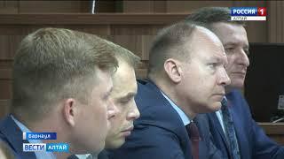 Алтайские депутаты разработают правила отлова и содержания бездомных животных
