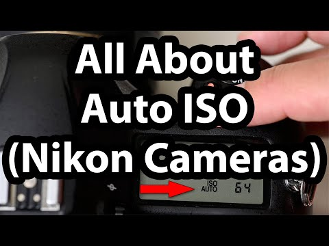 all-about-auto-iso-(nikon-cameras)