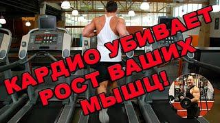 КАРДИО УБИВАЕТ РОСТ ВАШИХ МЫШЦ! / Видео