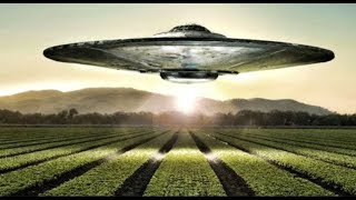 Сначала было любопытство потом паника. Видели нечто похожее на НЛО. Факты. Документальный фильм.