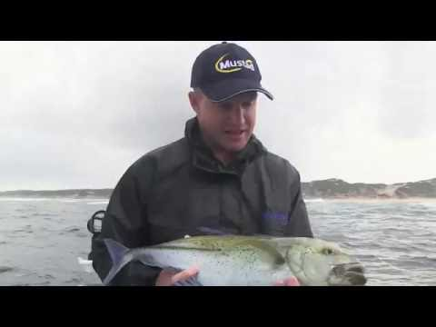 ASFN Deep Sea - Amaizing! Bluefin Kingies & Marlin on light tackle
