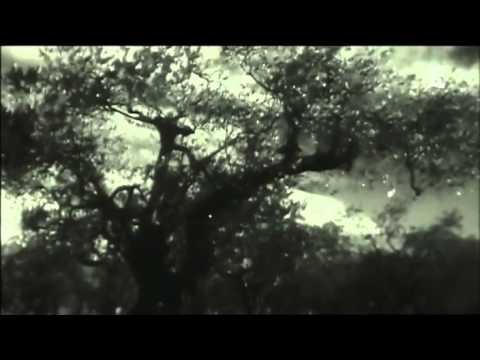 Jean Giono à Manosque, une fenêtre sur le monde