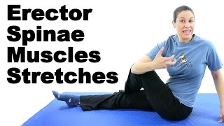 Erector Spinae Muscles Stretches - Ask Doctor Jo