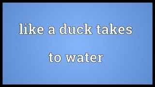 Like a duck takes to water Meaning