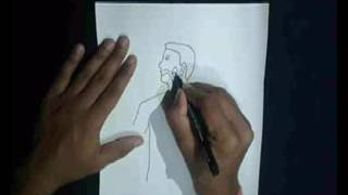 How To Draw Human Digestive System
