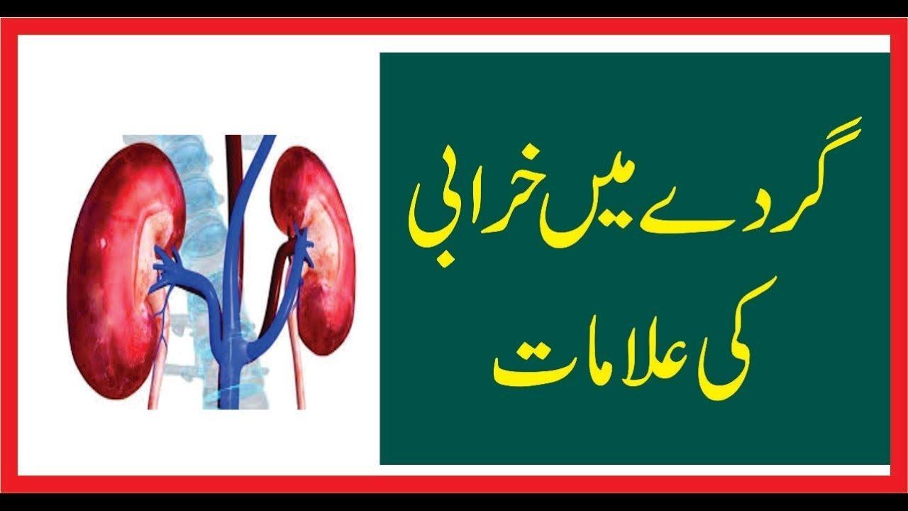 Symptoms Of Kidney Failure In Urdu Causes Of Pain In Kidney Urdu Youtube