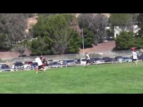 Video 445