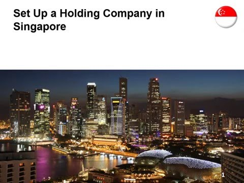 Set Up a Holding Company in Singapore