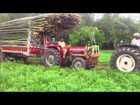 punjab tractors m m World leader in the field of agricultural machinery including agricultural tractors, combines, grape harvesters, hay balers & much more.
