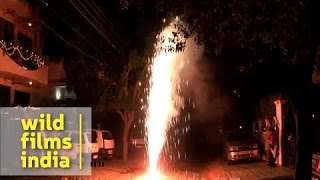 Bursting crackers on Diwali