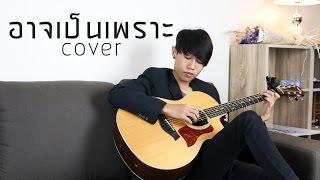 อาจเป็นเพราะ (Because of you) พลอยชมพู - Fingerstyle Guitar Cover by tonpalm