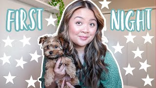 ★ FIRST NIGHT WITH A NEW PUPPY TIPS ★ | DOG VLOG