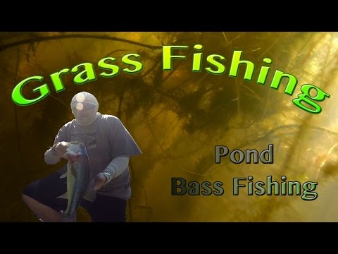 Spring time bass fishing easter weekend doovi for Pond bass fishing tips