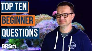 Answering 10 Beginner Aquarium Questions! Ultimate Beginner Guide Part 1