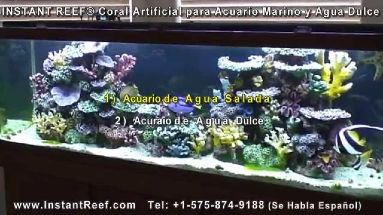 Corales artificiales para acuario marino acuario de agua for Acuarios para peces marinos