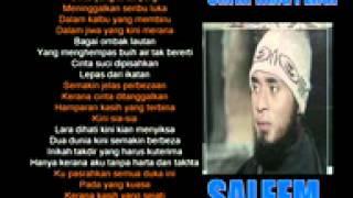 Gambar cover Saleem IKLIM   Cinta Yang Pergi   YouTube
