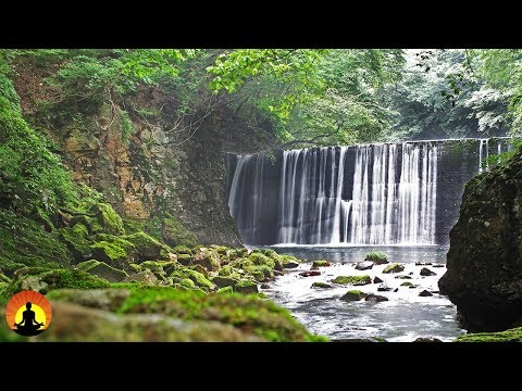 Meditation Music, Music for Studying, Relaxing Music, Music for Stress Relief, Focus Music, �