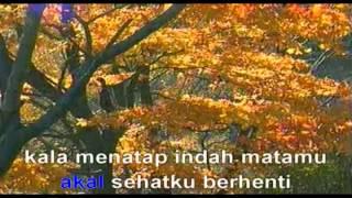ADA BAND AKAL SEHAT INDONESIA POP LEFT