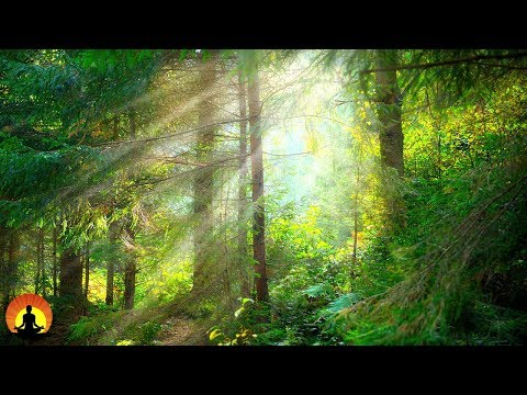 Meditation Music, Concentration Music, Study Music, Relaxing Music for Studying, Alpha Waves, ☯3401
