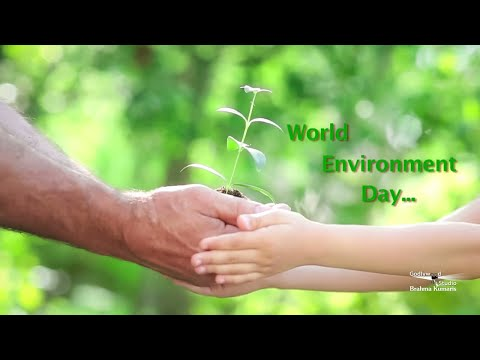 World Environment Day Special | Short Video in English | Brahma Kumaris