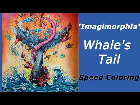 Speed Coloring In Imagimorphia Whales Tail