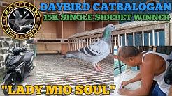 "DAYBIRD CATBALOGAN SI ""LADY MIO SOUL""  536.14 KM"