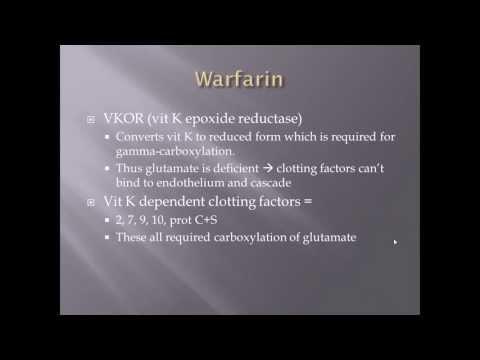 Vitamin K and Warfarin Correlation